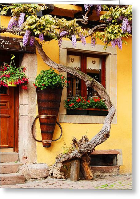 Wisteria In Bloom Greeting Cards - Wisteria and Yellow Wall in Alsace France Greeting Card by Greg Matchick