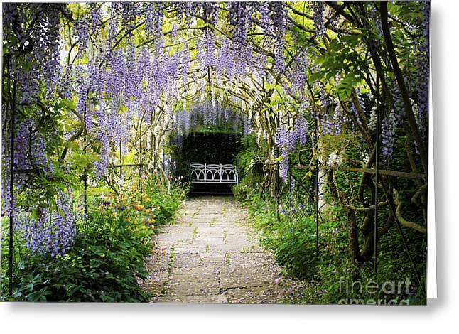 Wisteria Leaves Greeting Cards - Wisteria Archway  Greeting Card by Tim Gainey