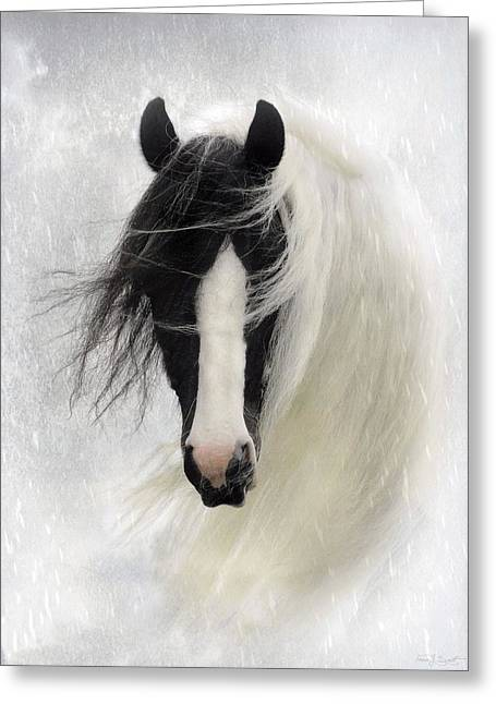 Horses Greeting Cards - Wisteria  Greeting Card by Fran J Scott