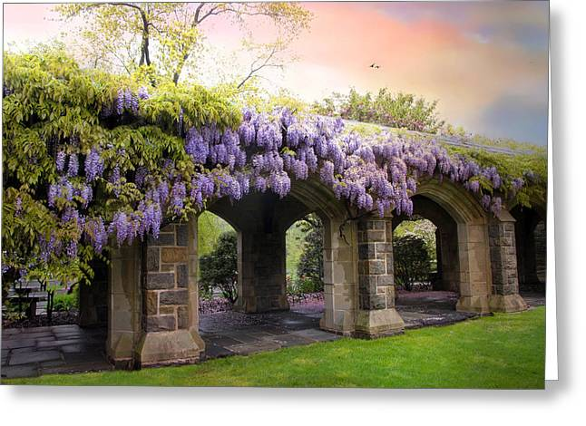 Wisteria Greeting Cards - Wisteria in May Greeting Card by Jessica Jenney