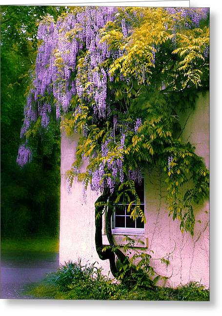 Floral Structure Greeting Cards - Wisteria Tree Greeting Card by Jessica Jenney