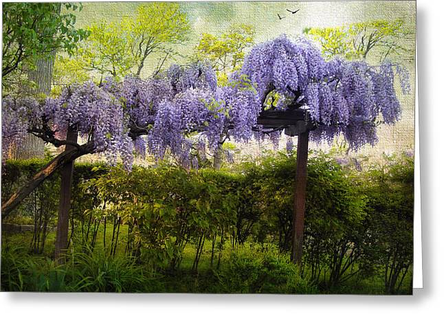 Trellis Greeting Cards - Wisteria Trellis Greeting Card by Jessica Jenney