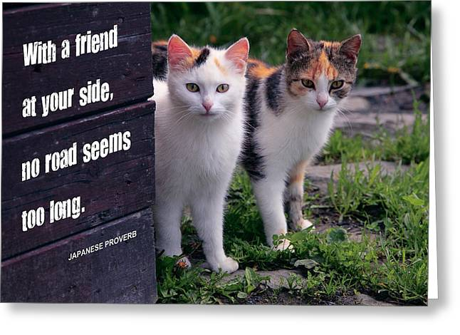 Lifelong Greeting Cards - With A Friend At Your Side . . . Greeting Card by Daniel Hagerman
