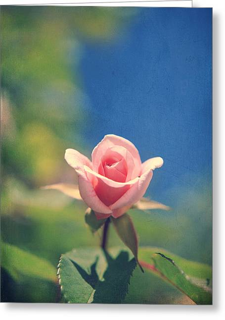 Texture Floral Greeting Cards - With Love Always Greeting Card by Laurie Search