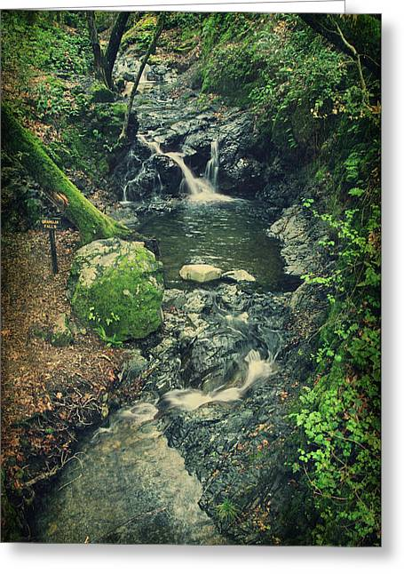 Falling Water Creek Greeting Cards - With You Here Beside Me Greeting Card by Laurie Search