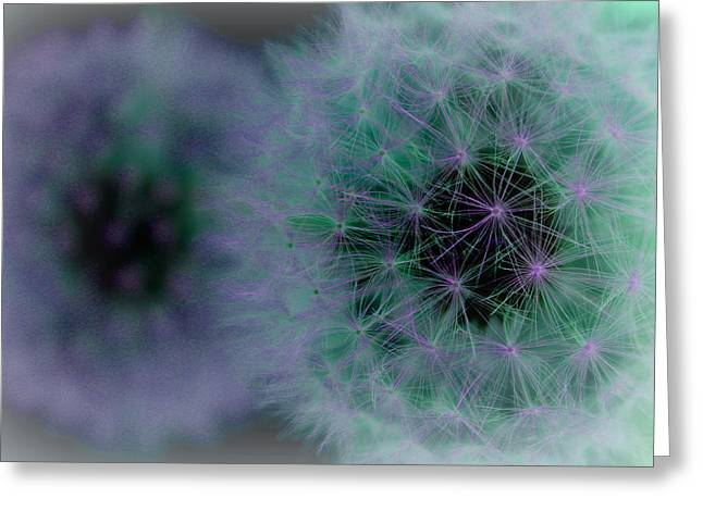 Nature Abstract Greeting Cards - With You I See Forever Greeting Card by  The Art Of Marilyn Ridoutt-Greene