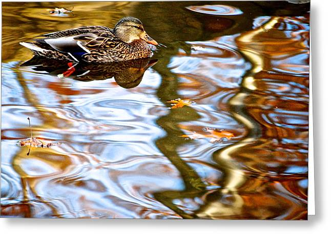Babbling Greeting Cards - Withdrawn Greeting Card by Frozen in Time Fine Art Photography