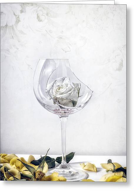 Morbid Greeting Cards - Withered White Rose Greeting Card by Joana Kruse