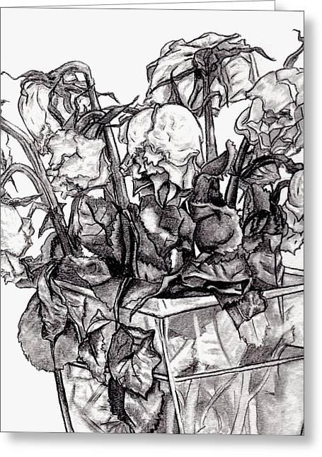 Blake Drawings Greeting Cards - Withering Roses 2012 Greeting Card by Blake Grigorian