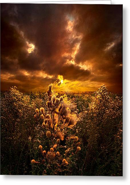 Field. Cloud Greeting Cards - Within Peace and Solitude Greeting Card by Phil Koch