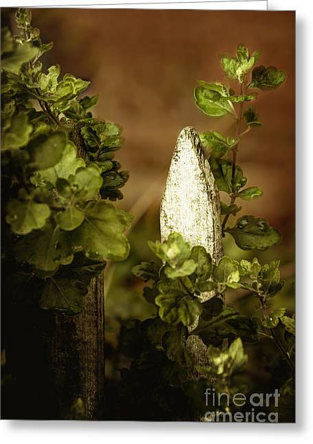 Wooden Stake Greeting Cards - Within the Garden Greeting Card by Margie Hurwich