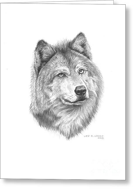 Wildlife Pictures Greeting Cards - Wolf-2 Greeting Card by Lee Updike