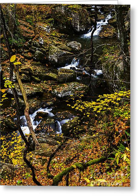 Wolf Creek Greeting Cards - Wolf Creek Cascade Greeting Card by Thomas R Fletcher