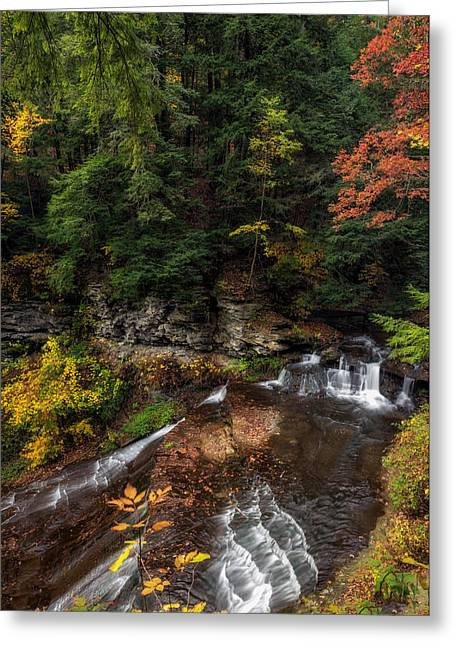 Wolf Creek Falls Greeting Card by Mark Papke