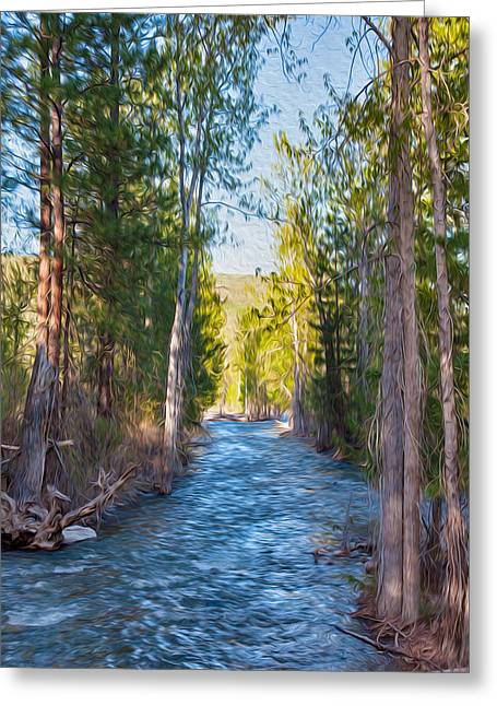 Okanogan National Forest Mixed Media Greeting Cards - Wolf Creek Flowing Downstream  Greeting Card by Omaste Witkowski