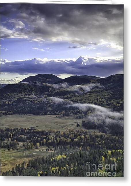 Wolf Creek Greeting Cards - Wolf Creek Valley Greeting Card by Timothy Johnson