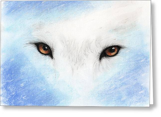 Wolf Pastels Greeting Cards - Wolf Eyes Greeting Card by Janelle Schneider