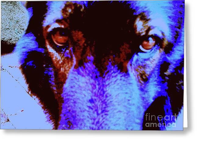 Wolf Eyes Greeting Card by Nina Kaye