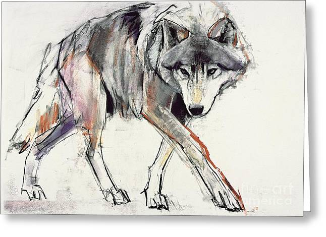 Wild Animals Paintings Greeting Cards - Wolf  Greeting Card by Mark Adlington