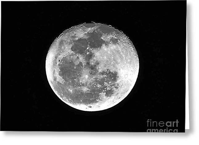 Man In The Moon Greeting Cards - Wolf Moon Waning Greeting Card by Al Powell Photography USA