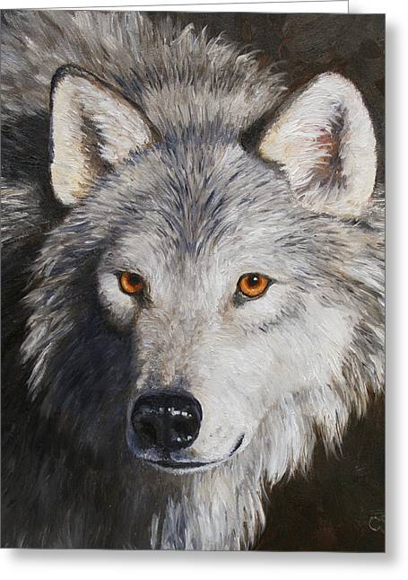 Wolf Portrait Greeting Cards - Wolf Portrait Greeting Card by Crista Forest