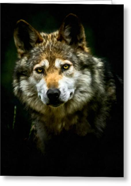 Wolf Portrait Greeting Cards - Wolf Portrait Greeting Card by Ernie Echols