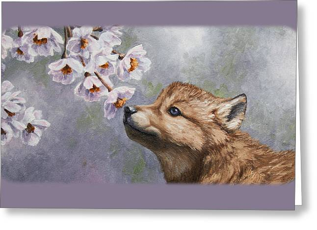 Wild Dog Greeting Cards - Wolf Pup and Blossoms iPhone Case Greeting Card by Crista Forest