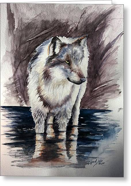 Wolf Reflektions Greeting Card by Andrea Pischel