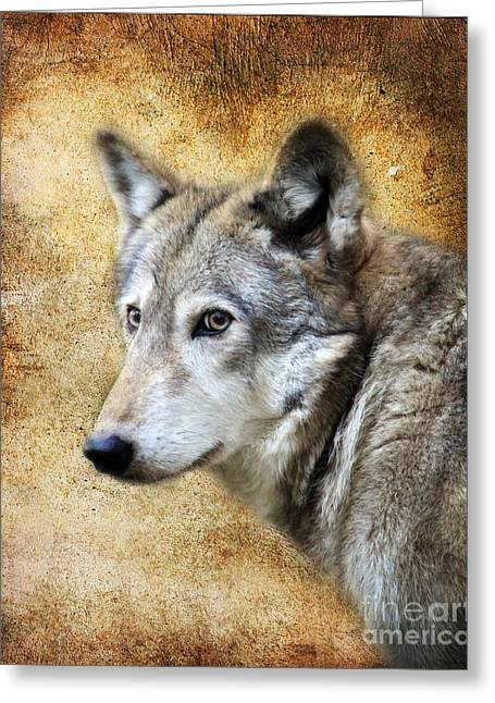 Preditor Greeting Cards - Wolf Texture Greeting Card by Steve McKinzie