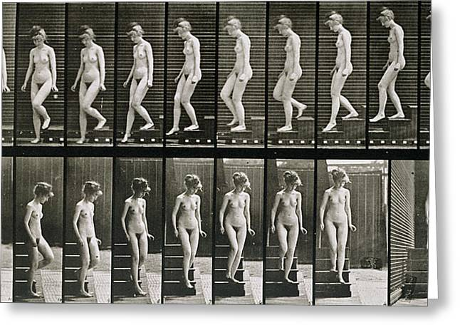 Descend Greeting Cards - Woman descending steps Greeting Card by Eadweard Muybridge