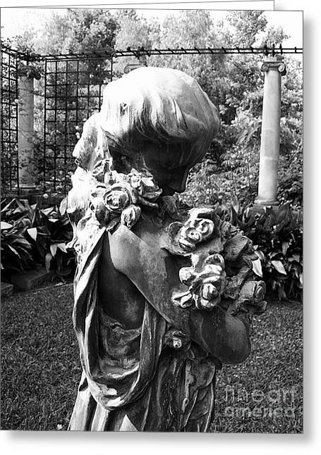 Floral Photographs Sculptures Greeting Cards - Woman In Garden With Roses Greeting Card by Nathan Little