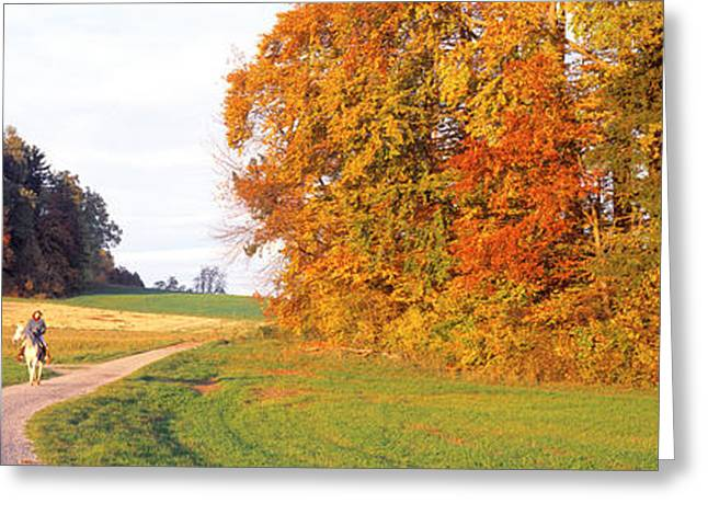 Woman On Horse, Cantone Zug, Switzerland Greeting Card by Panoramic Images