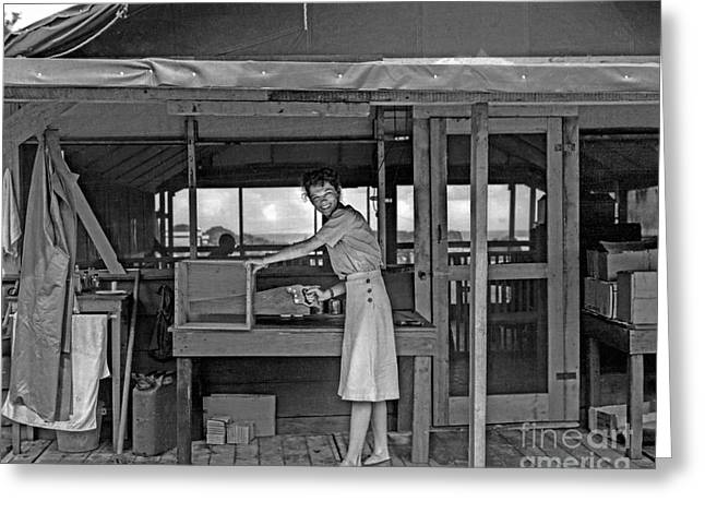 World War 2 Airmen Greeting Cards - Woman Sawing Box in Half Greeting Card by Brady Barrineau