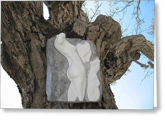 Nude Reliefs Greeting Cards - Woman torso - cast 1 Greeting Card by Flow Fitzgerald