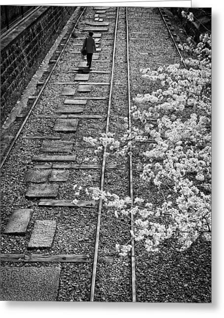 Cherry Women Greeting Cards - Woman walking along rail road track Greeting Card by John Wong