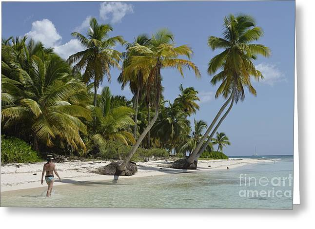 One Piece Swimsuit Greeting Cards - Woman walking by coconuts trees on a pristine beach Greeting Card by Sami Sarkis