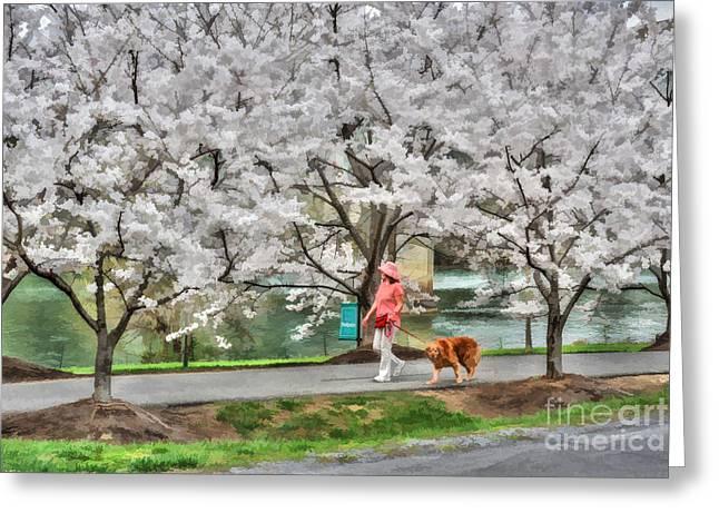 Woman Walking Dog  Rail To Trail Greeting Card by Dan Friend