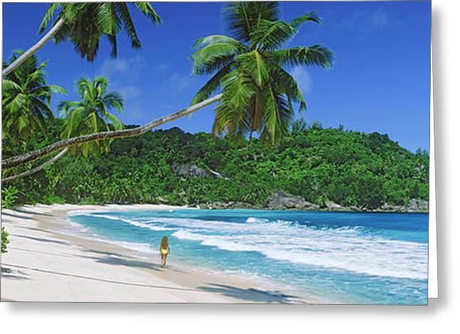 Women Only Greeting Cards - Woman Walking On The Beach, Anse Greeting Card by Panoramic Images