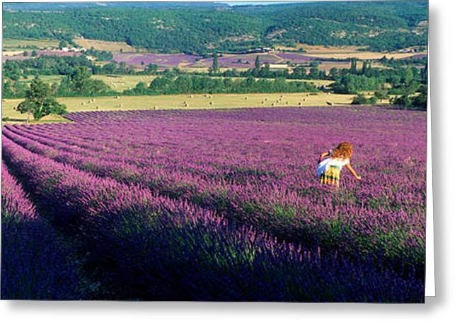 Provence Village Photographs Greeting Cards - Woman Walking Through Fields Greeting Card by Panoramic Images