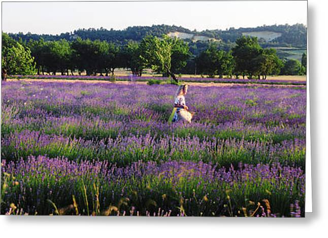 Women Only Greeting Cards - Woman Walking With Basket Greeting Card by Panoramic Images