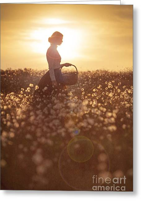 Woman With A Wicker Basket At Sunset Greeting Card by Lee Avison