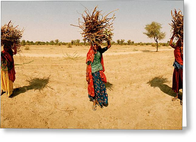 Real People Greeting Cards - Women Carrying Firewood On Their Heads Greeting Card by Panoramic Images