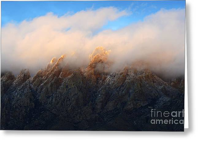 Las Cruces New Mexico Greeting Cards - Wonder In The Land Of Enchantment Greeting Card by Bob Christopher