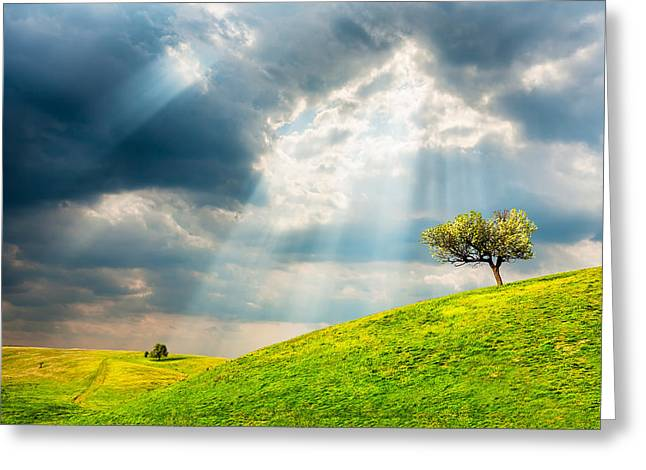 Field. Cloud Greeting Cards - Wonder Land Greeting Card by Evgeni Dinev