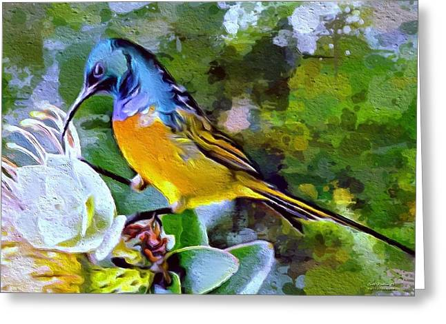 Digital Designs Greeting Cards - Wonderful bird portrait Greeting Card by Scott Wallace