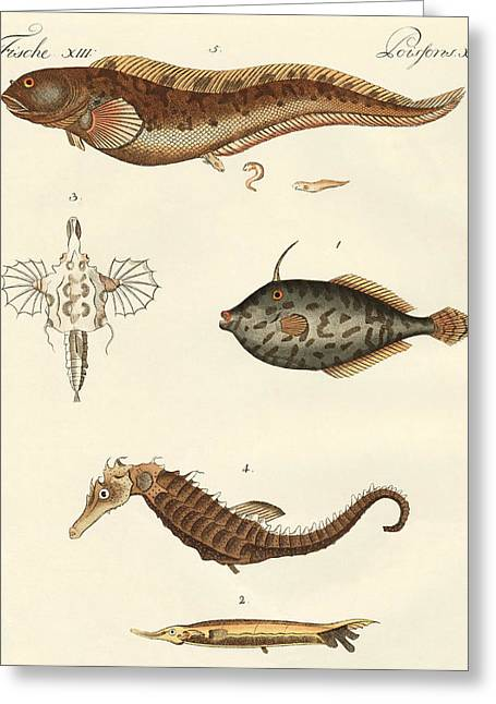 Fish Drawings Greeting Cards - Wonderful fish Greeting Card by German School