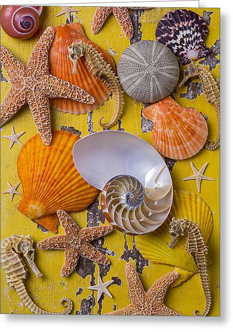 Wonderful Sea Life Greeting Card by Garry Gay