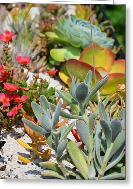 Rosette Paintings Greeting Cards - Wonderful succulent plants 2 Greeting Card by Lanjee Chee
