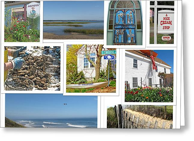 Marconi Beach Greeting Cards - Wonderful Wellfleet Greeting Card by Barbara McDevitt