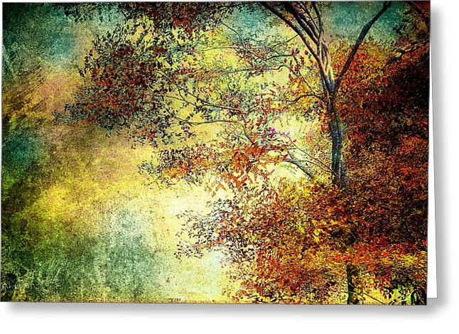 Abstract Expressionism Photographs Greeting Cards - Wondering Greeting Card by Bob Orsillo